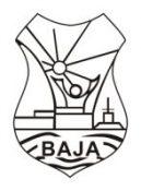 Bajai EGYMI logo (2)_4cm150dpi